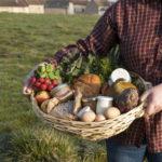 Panier Manger Bio et Local